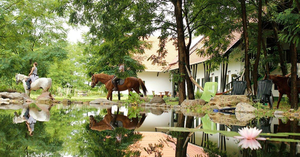 Szállás lovaglással vagy íjászkodással a Hunor Lovastanyán
