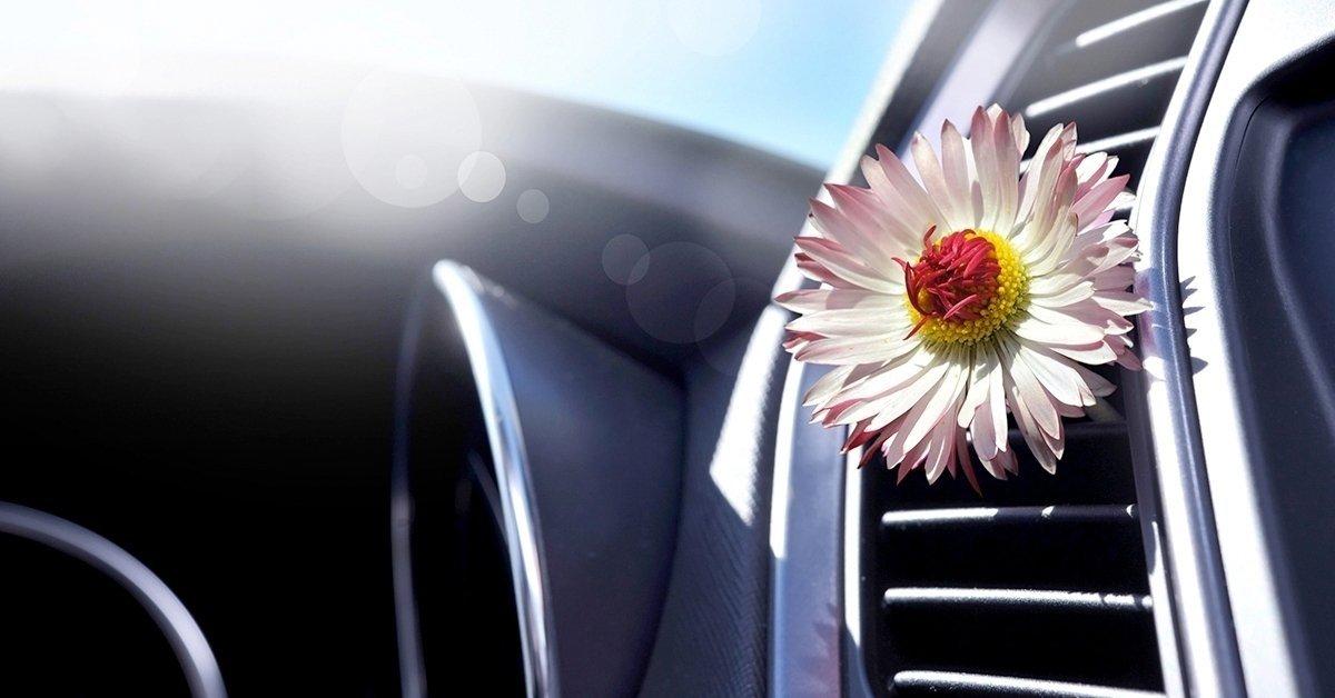 Készítsd fel autód a hőségre: klímafertőtlenítés