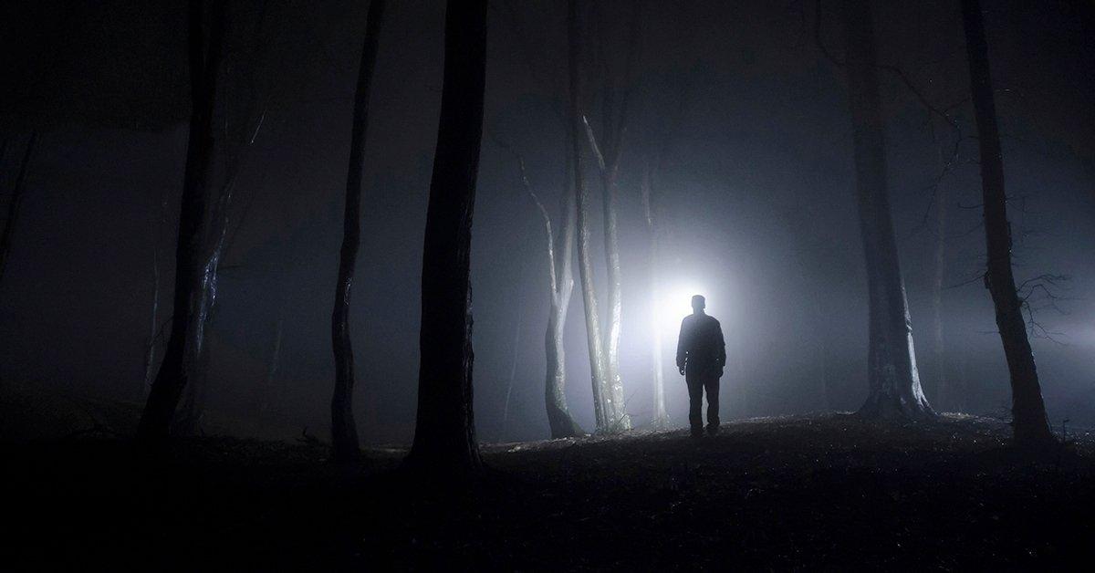 Menekülés a pokoli erdőből: szabadulós játék 7-12 főnek