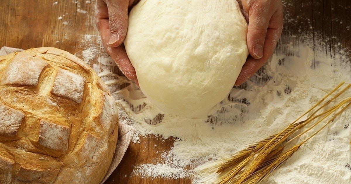 Kézműves sajt, kenyér, kovász, vaj és joghurt készítő klub