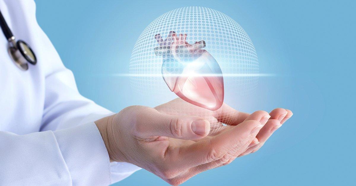Teljes feltáró vizsgálat: szívultrahang vizsgálat