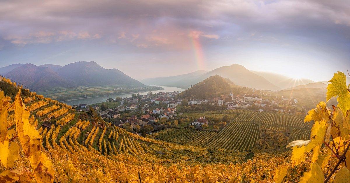 Vadregényes kirándulás Ausztriában: buszos utazás 1 főnek
