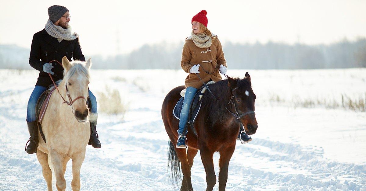 Örök élmény a lovak szerelmeseinek: lovasoktatás kezdőknek
