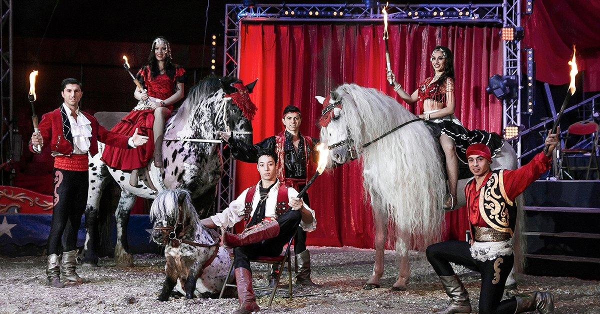 Belépőjegy a Magyar Nemzeti Cirkusz jubileumi gálaműsorára