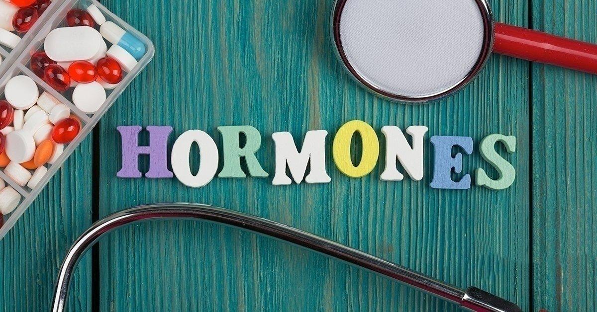 Hormonrendszer felmérés