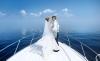 Balatoni hajós álomesküvő vízparti lakodalommal, szállással