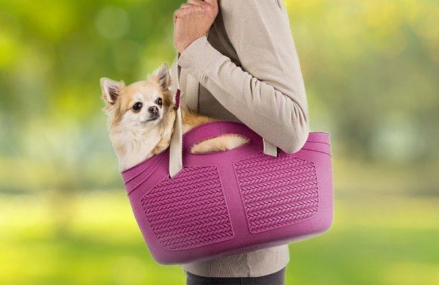 Mia kisállat hordozó táska, 40x15x24 cm, lila